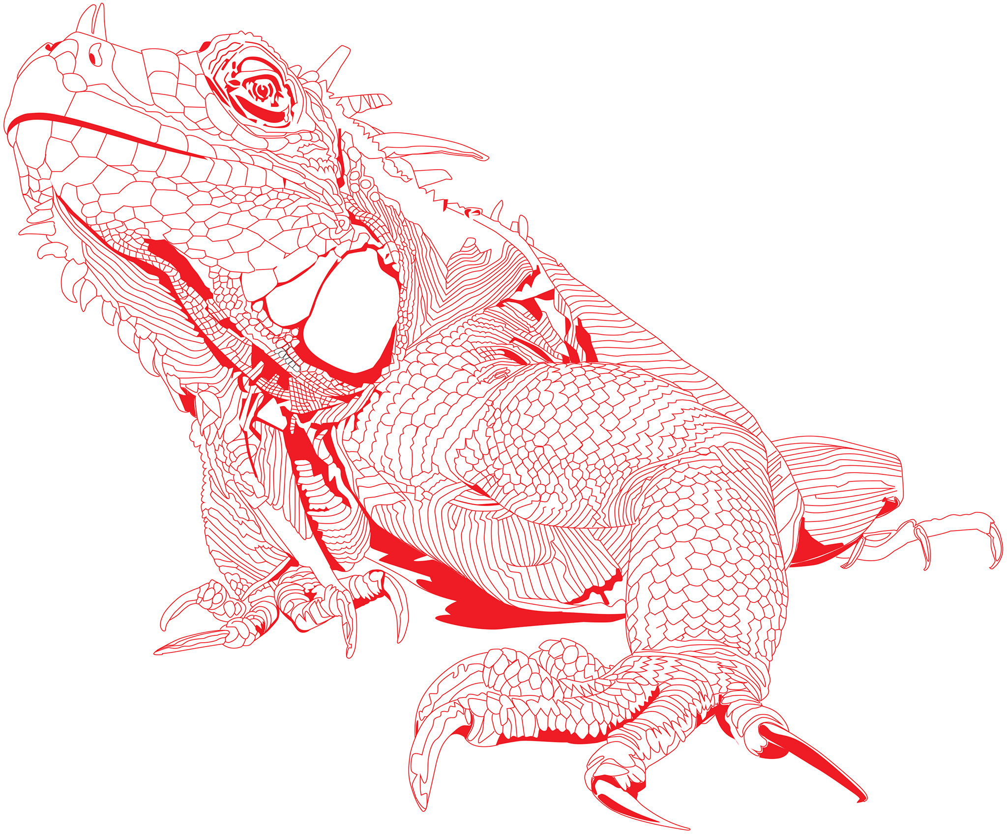 12-iguana